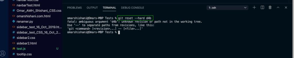 Git ambiguous argument error message.