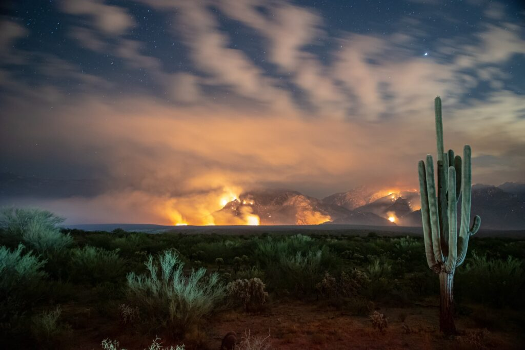 Burning desert with cactus in foreground.
