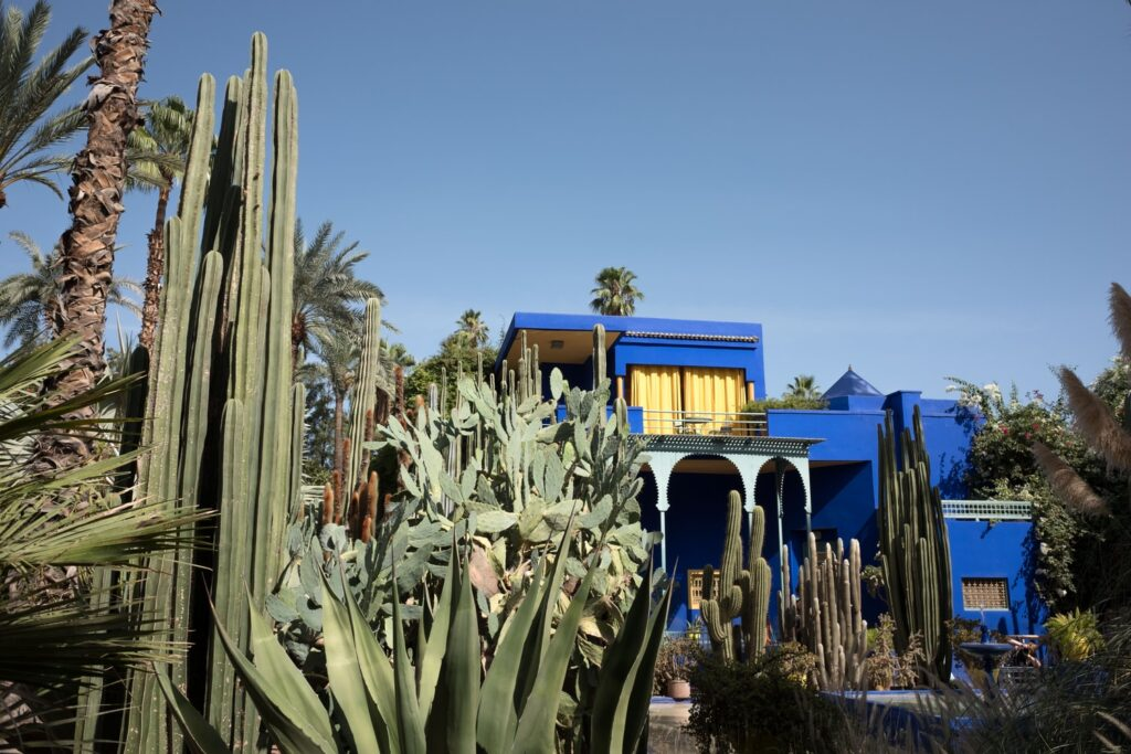 Picture of an azure blue house with many cactuses planted in front of it in the foreground